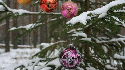 Дерево, ветка, снег, шары, лес, праздник, новый год