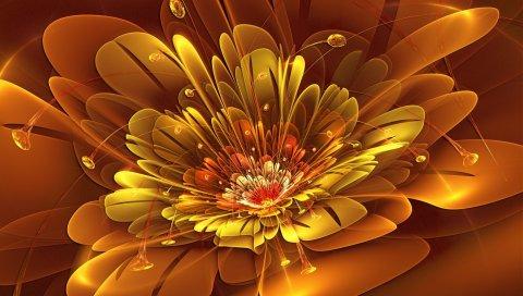 Цветок, узоры, свет, яркий