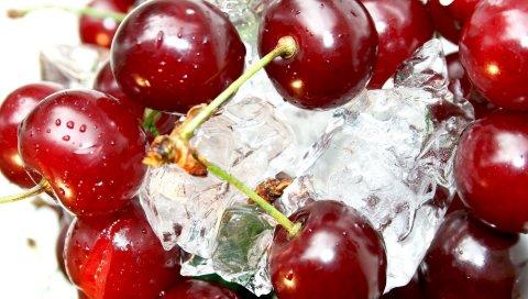Вишня, ягода, спелый, лед, макро