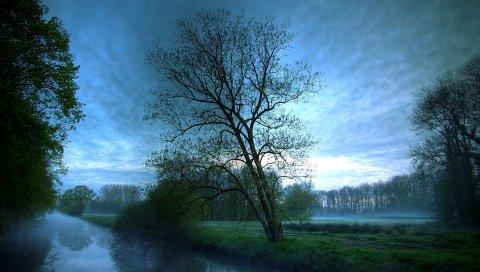 Туман, деревья, река, вечер, тайна
