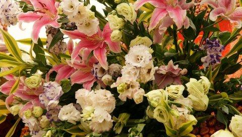 Розы, лилии, цветы, букеты, композиции, красивые