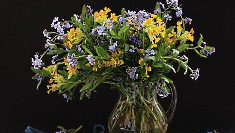 Цветы, поле, маленький, цветок, кувшин