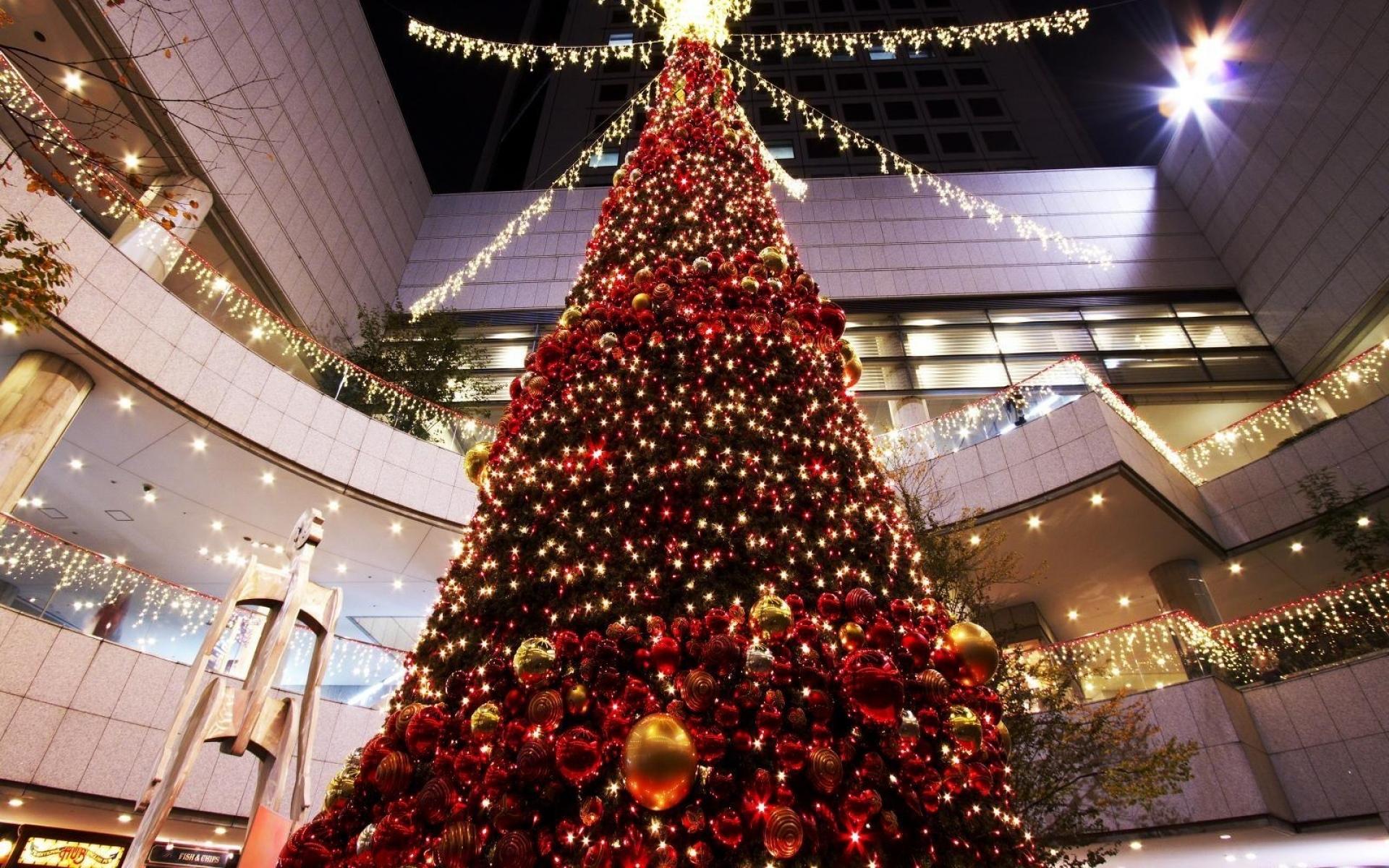 christmas tree shop