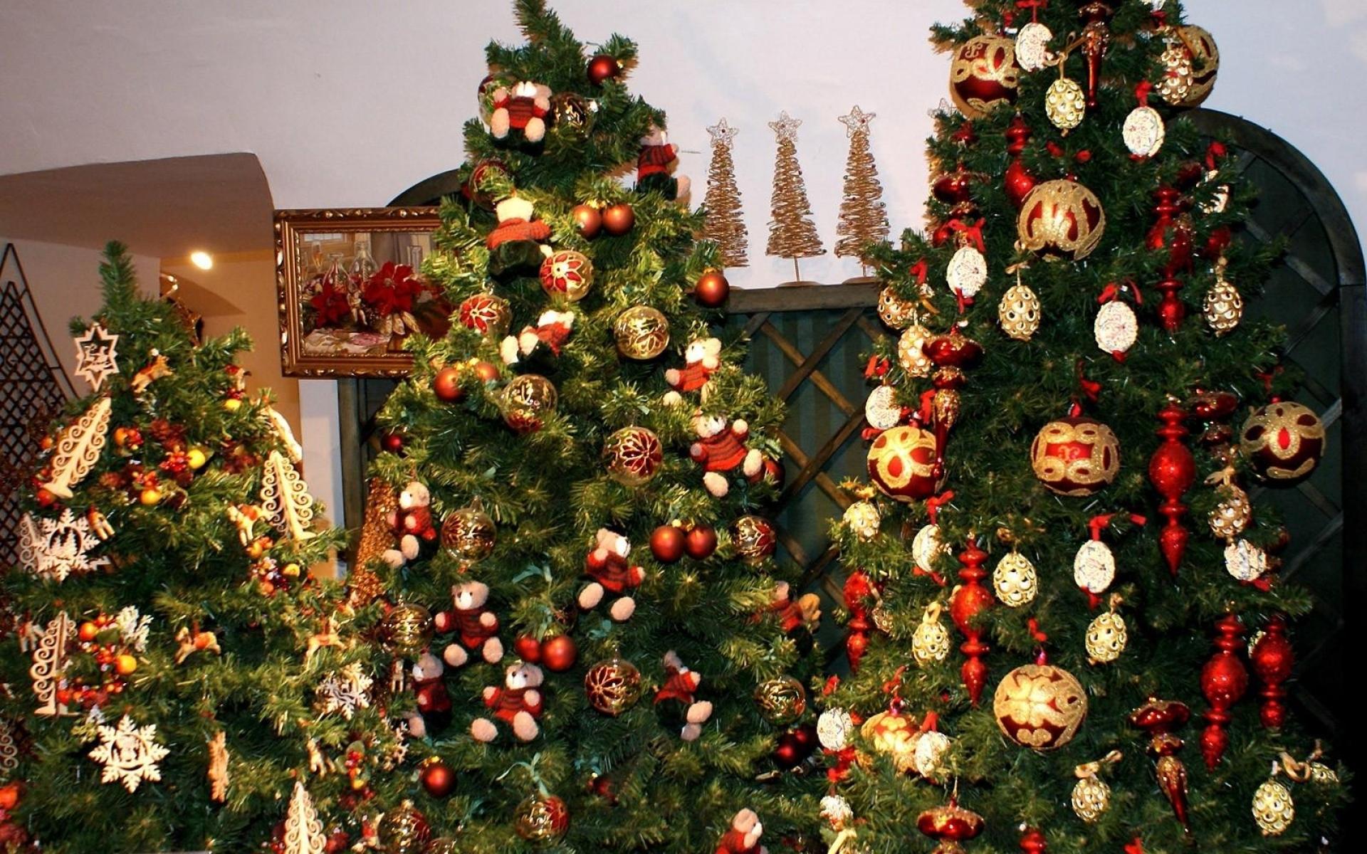 Картинки фото елка
