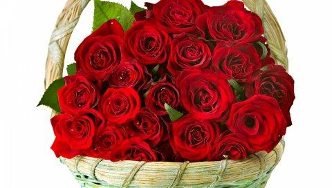 Розы, цветы, куча, корзина, ловко