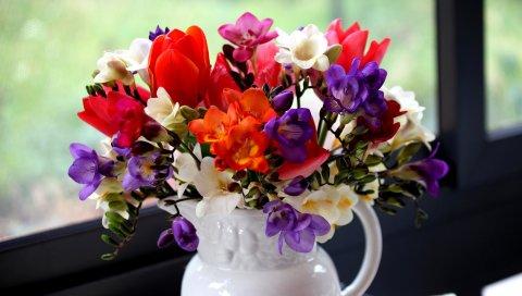 Тюльпаны, фрезия, цветы, букет, кувшин, окно