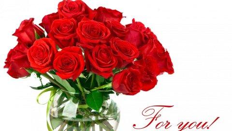Розы, цветы, букет, яркий, красный, белый фон, надпись, ваза