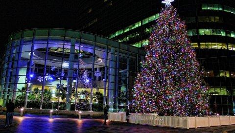 Дерево, рождество, гирлянда, фехтование, улица, праздник
