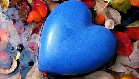 День Святого Валентина, праздник, сердце, синий, листья, вода