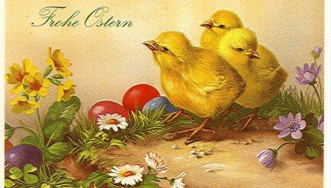 Паша, яйца, цыплята, цветы, открытка, этикетка