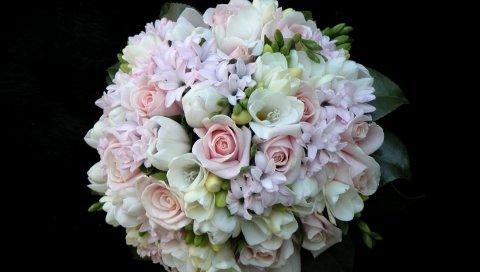 Розы, цветы, букеты, воздушный шар, нежность, белый фон