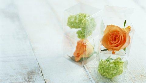 Розы, цветы, бутоны, коробки, подарок, стол