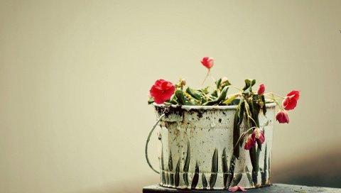 Цветы, свисающие, ведро