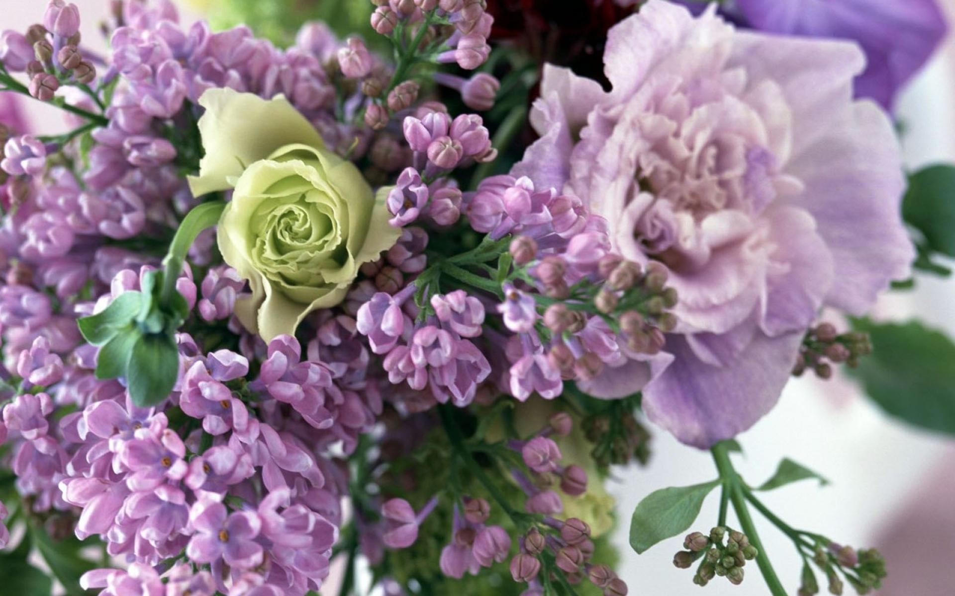 Картинки Роза, цветок, сирень, букет, весна фото и обои на рабочий стол
