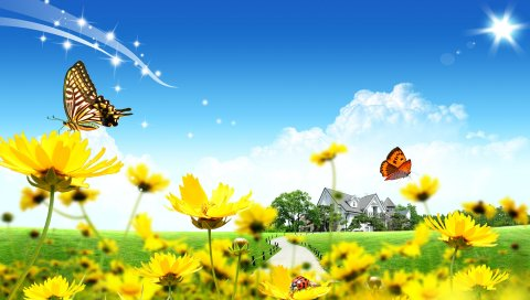 Дом, цветы, газон, божьи коровки