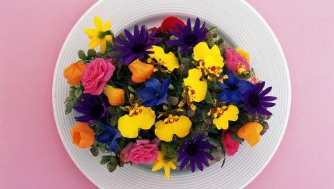 Розы, цветы, композиция, тарелка, яркие, красочные, красота