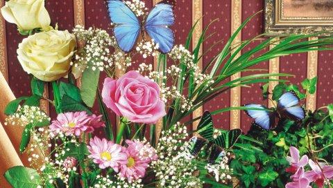 Розы, гипсофила, орхидеи, цветок, трава, бабочка, фотография