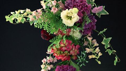 Гортензии, цветы, цветок, песня, красота, фон