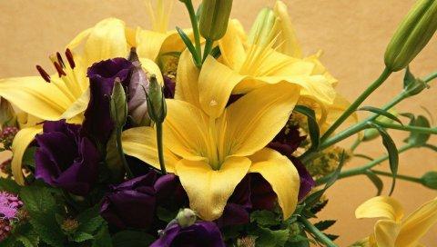 Лилии, цветы, букет, крупный план