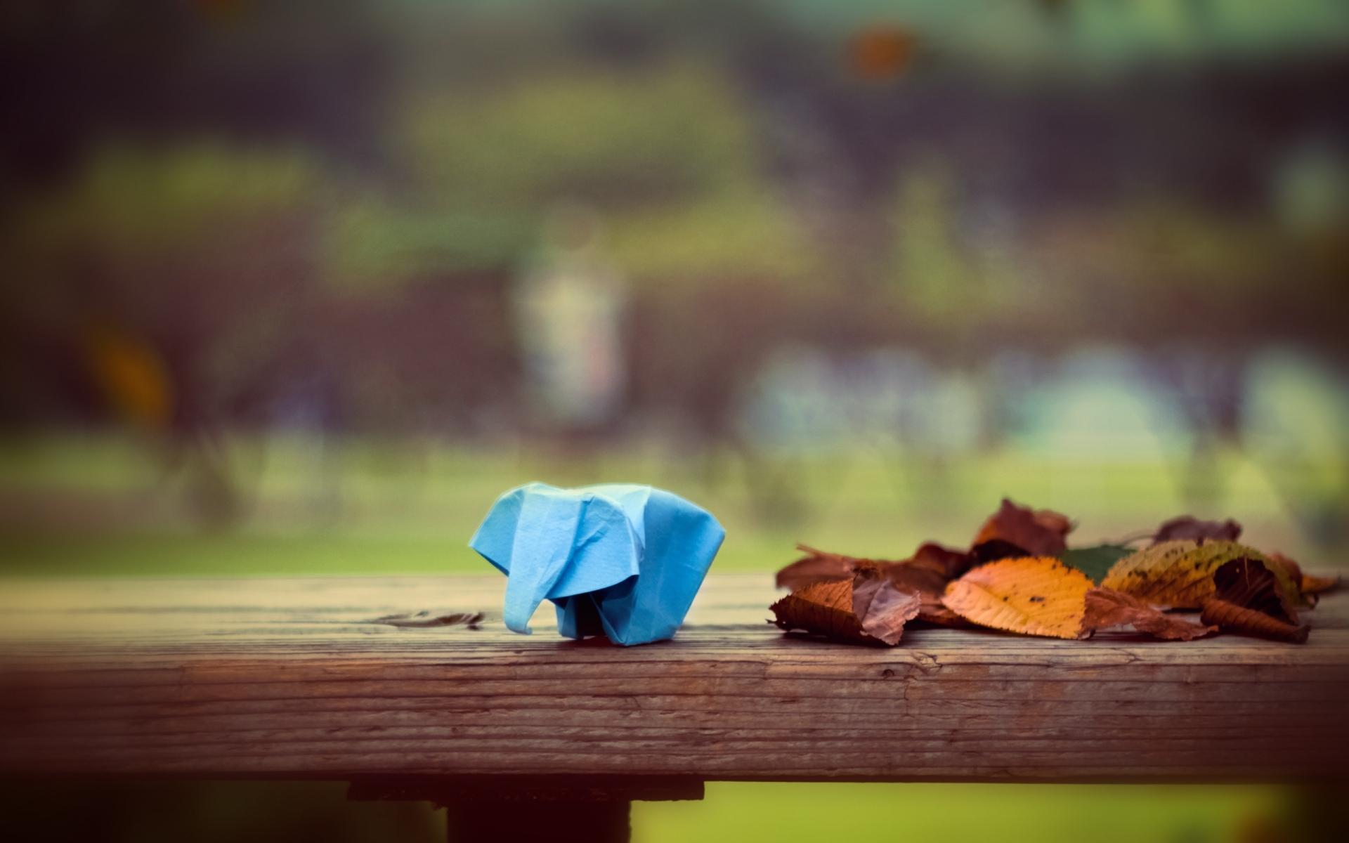 Картинки Бумага, листья, оригами, слон фото и обои на рабочий стол