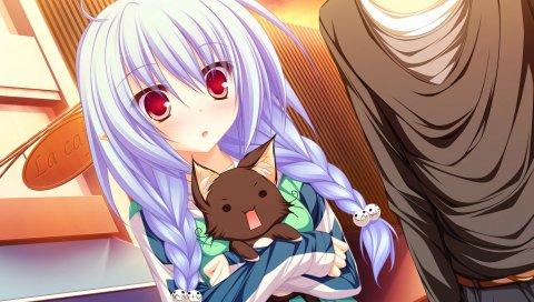 Mikagami mamizu, lunaris filia, melis, девушка, волосы, уши, кошка, косы