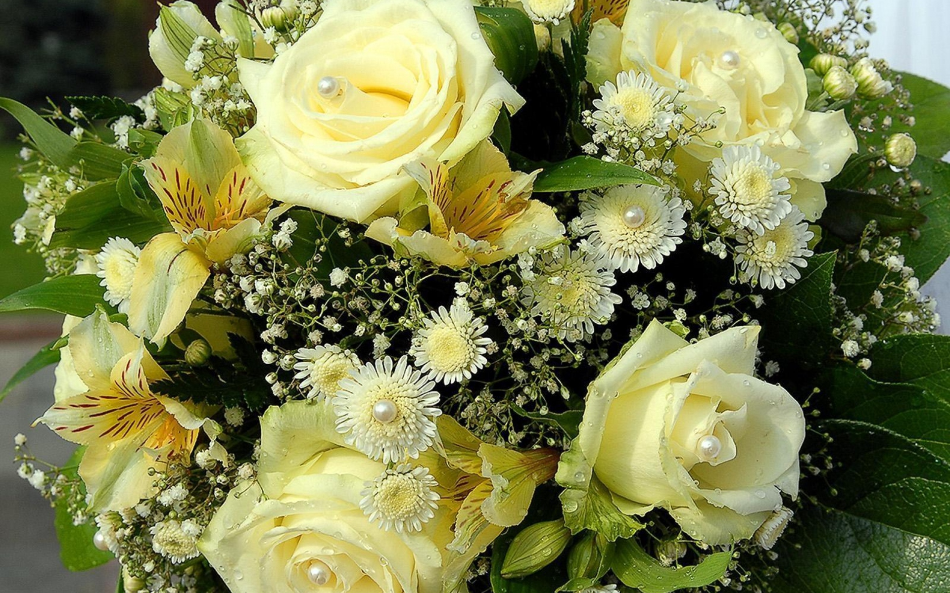 Картинки Розы, лилии, цветы, букет, бусы, дизайн, капля фото и обои на рабочий стол