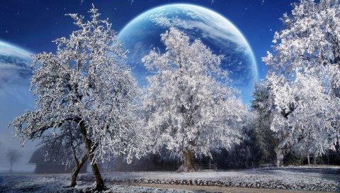 Деревья, иней, планета, земля, небо, звезды, парк
