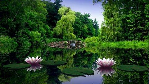 Водяные лилии, вода, листья, пруд, мост, деревья, красота, зеленый, природа