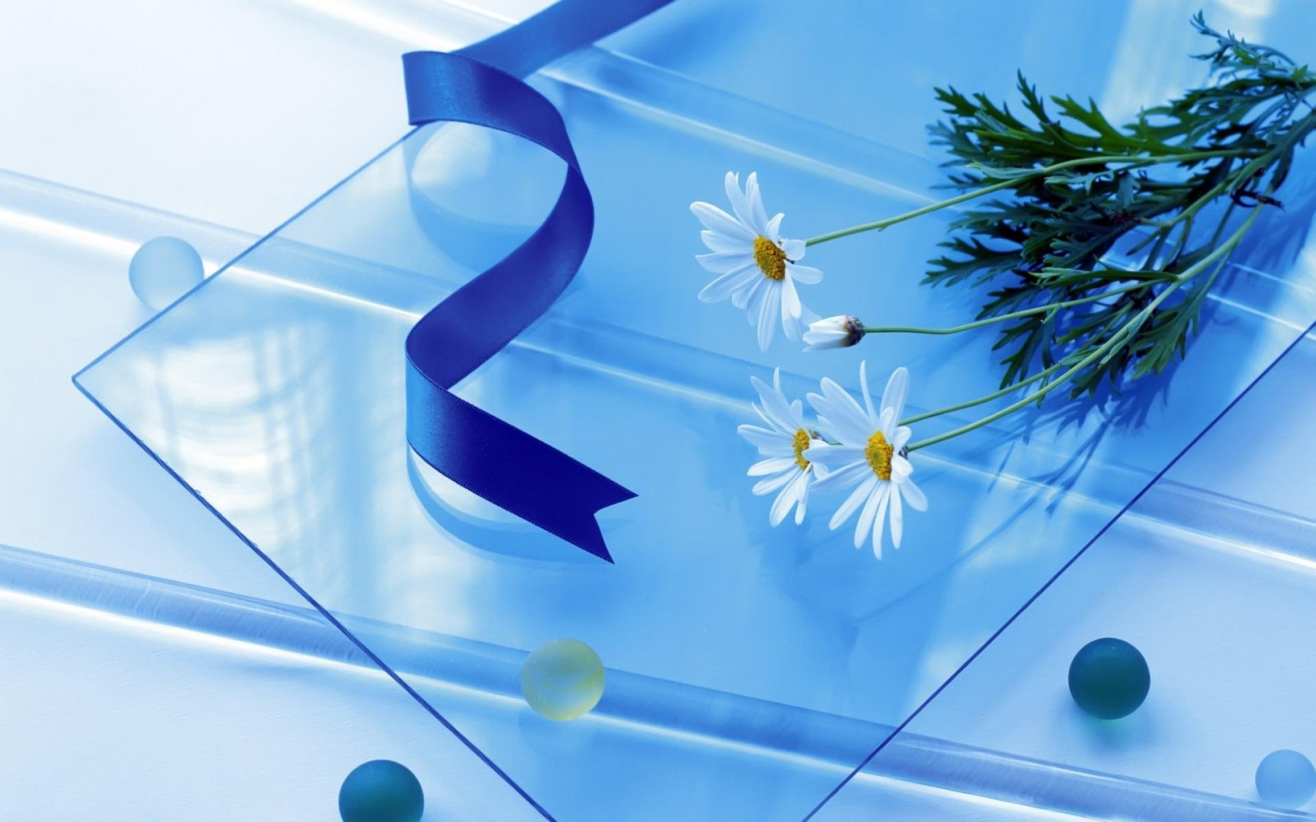 Картинки Ромашка, цветы, стекло, бусы, лента фото и обои на рабочий стол