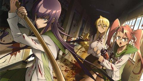 Высшая школа мертвых, busujima saeko, школа, девочки, оружие, кровь, зомби
