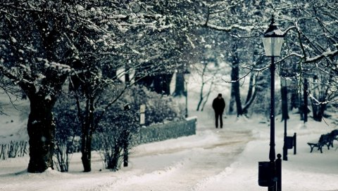 Снег, человек, скамейка, дерево, огни, зима