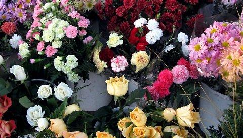 Розы, хризантемы, гвоздики, цветы, прилавки