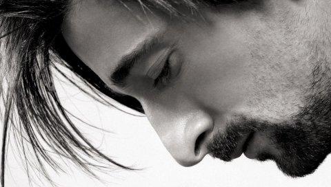 Adrien brody, брюнетка, лицо, щетина, волосы, крупный план, черный белый