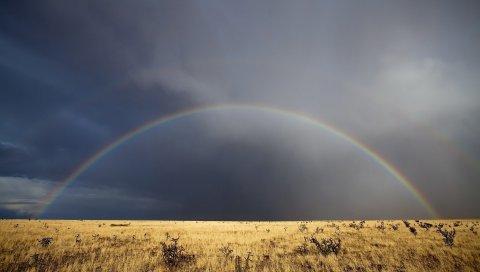 Радуга, поле, после дождя, небо, облака, степь