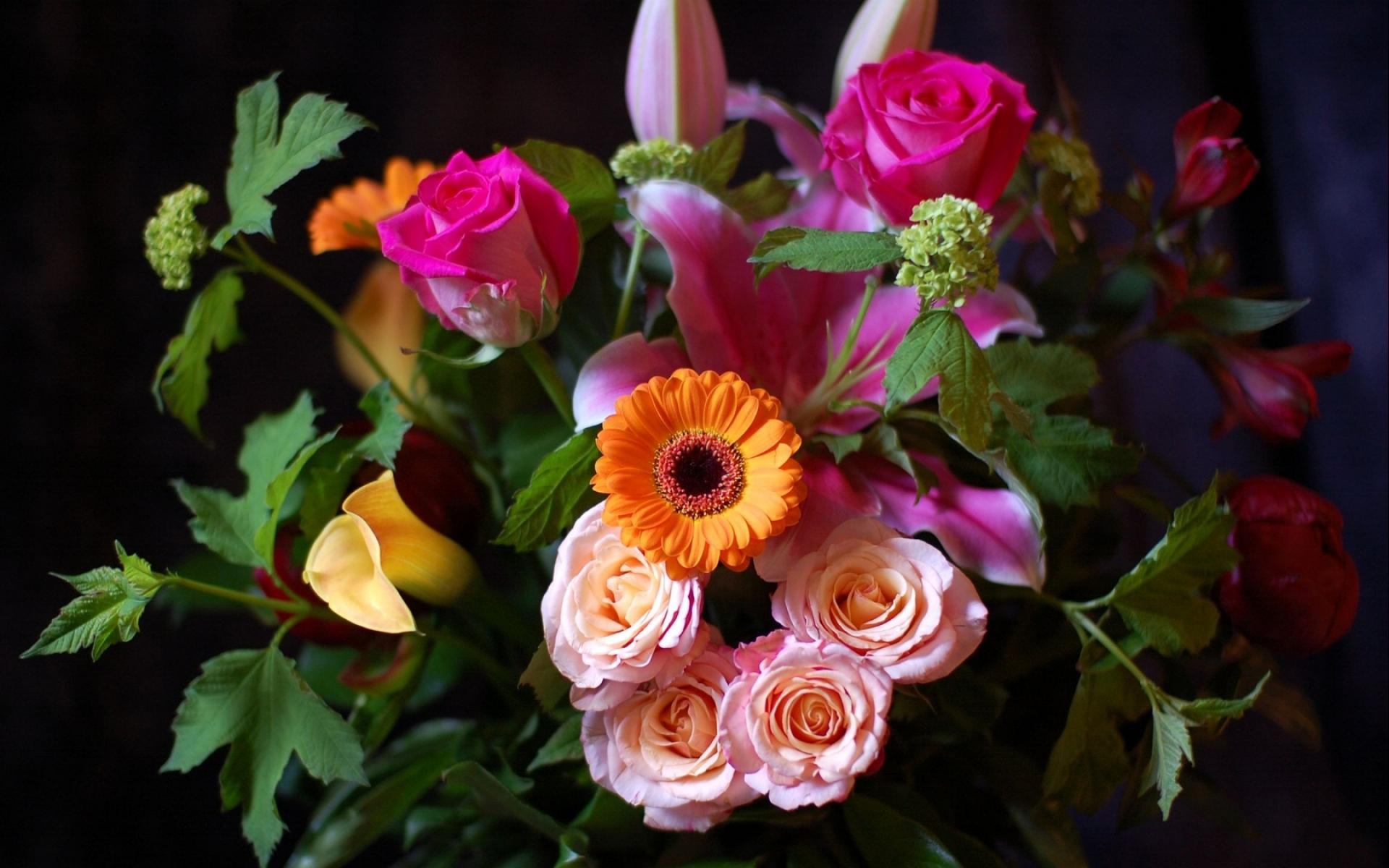 Картинки Розы, герберы, лилии, цветы, куча, шарм фото и обои на рабочий стол
