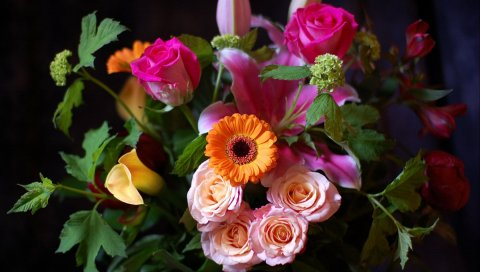 Розы, герберы, лилии, цветы, куча, шарм