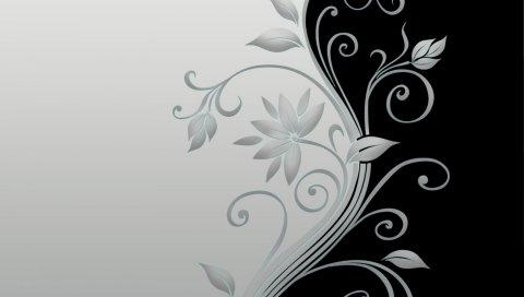 Цветок, стебель, черный, белый