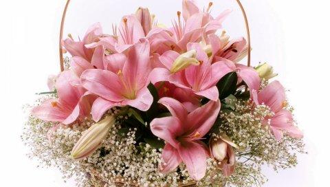 Лилии, цветы, корзина, лоты