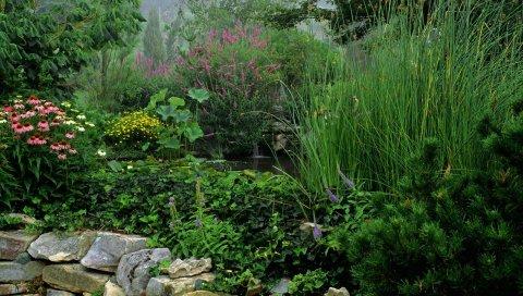 Парк, камни, вода, растительность, зелень, цветы