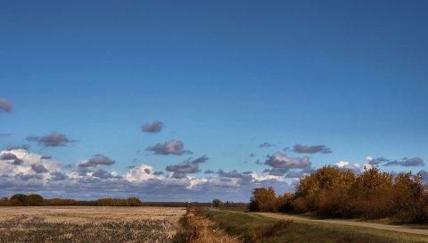 Поле, дорога, деревья, облака, сельское хозяйство, осень