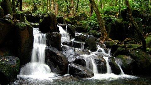 Падения, камни, дерево, вода, ручьи, деревья, сундуки
