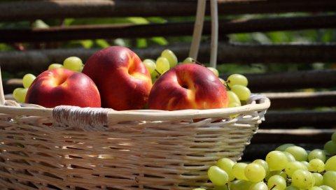 Персики, виноград, корзина, урожай