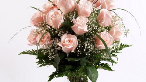 Розы, цветы, букет, банк, трава