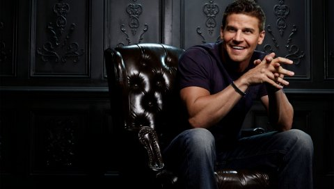 Давид Бореаназ, актер, мужчина, стул, тень, спортивная сборка, улыбка