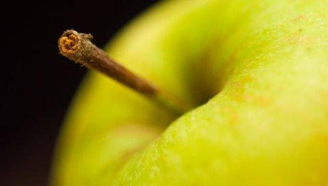 Яблоко, фрукты, зеленый