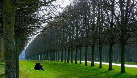 Париж, парк, влюбленные деревья, пара