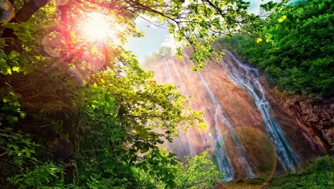 Падения, солнце, пятна света, кусты, деревья