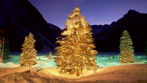 Деревья, снег, рождество, новый год, гирлянды