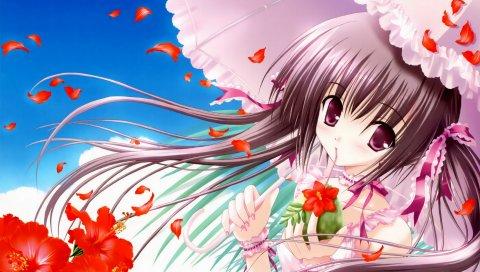 Девушка, зонтик, ветер, волосы, маки, цветы