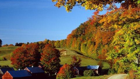 Деревня, осень, дома, деревья, луга